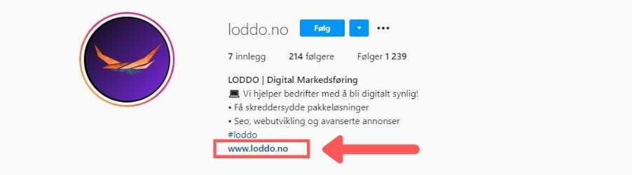 Loddo Instagram link til nettside